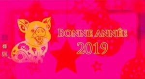 2019-annee-du-cochon-de-terre